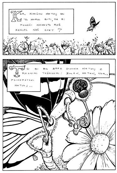 Knjiga Oklepaj: Metuljeve sanje